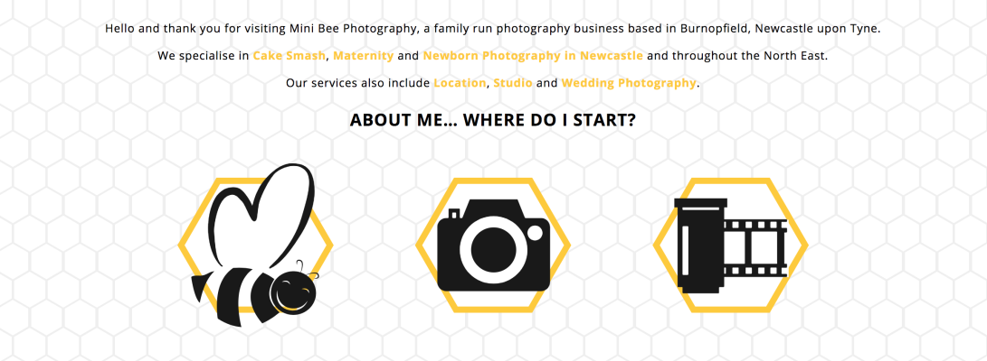 Mini Bees Photography Website Homepage